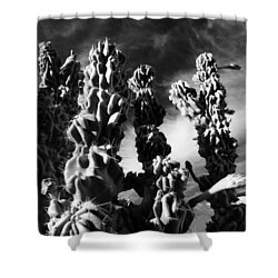 Cactus 2 Bw Shower Curtain