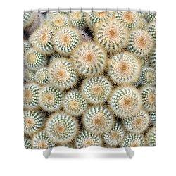 Cactus 35 Shower Curtain
