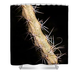 Cactus Branch Shower Curtain