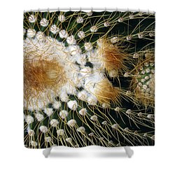 Cactus Close-up Shower Curtain by Joyce  Wasser