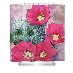 Cactus Flowers I Shower Curtain by Mike Robles
