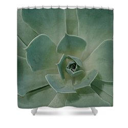 Cactus Heart Shower Curtain