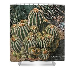 Cactus In The Garden Shower Curtain by Tom Janca