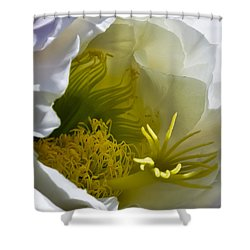 Cactus Interior Shower Curtain
