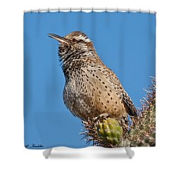 Cactus Wren Singing Shower Curtain