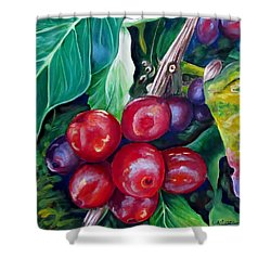 Cafe Costa Rica Shower Curtain