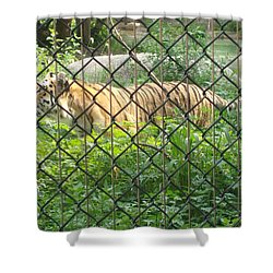 Shower Curtain featuring the photograph Caged by Fortunate Findings Shirley Dickerson