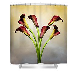 Cala Lily 5 Shower Curtain