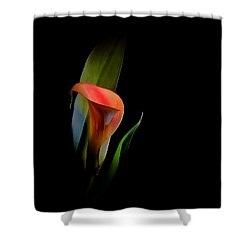 Cala Lilly Shower Curtain