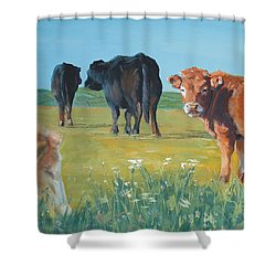 Calf Painting Shower Curtain