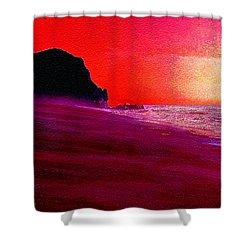 California Beaches Shower Curtain