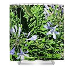Shower Curtain featuring the photograph California Beauty by Mini Arora