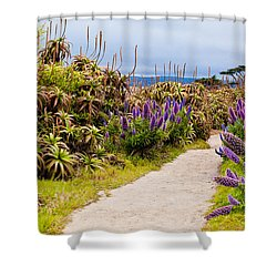 California Coastline Path Shower Curtain