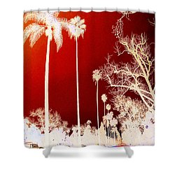 California Dreamin' Dreamin' 1 Shower Curtain