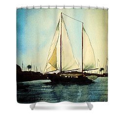 California Dreamin V Shower Curtain by Kip DeVore