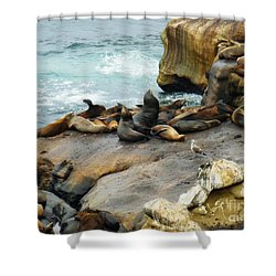 California Dreaming Shower Curtain by Mary Machare