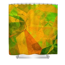 California Poppies Shower Curtain by Susan Schroeder