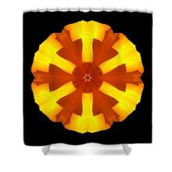 Shower Curtain featuring the photograph California Poppy Flower Mandala by David J Bookbinder