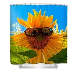 California Sunflower Shower Curtain by Bill Gallagher