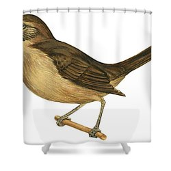 California Thrasher Shower Curtain by Anonymous