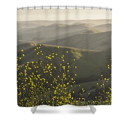 Shower Curtain featuring the photograph California Wildflowers by Steven Sparks