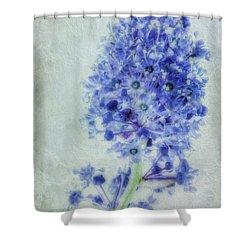 Californian Blue Shower Curtain by John Edwards