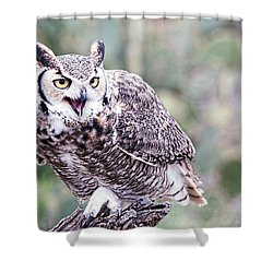 Shower Curtain featuring the photograph Call Of The Owl by Dan McManus