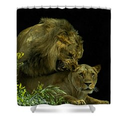 Call Of The Wild 2 Shower Curtain by Ernie Echols