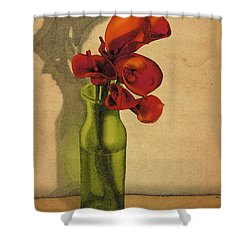 Calla Lilies In Bloom Shower Curtain by Meg Shearer