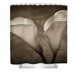 Shower Curtain featuring the photograph Calla Lilies In Sepia by Sebastian Musial