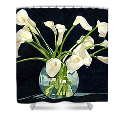 Calla Lilies In Vase Shower Curtain