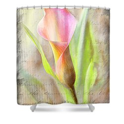 Calla Lily In Pink Shower Curtain