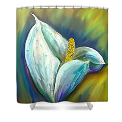 Calla Lily In The Morning Light Shower Curtain by Angela A Stanton