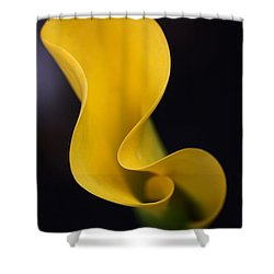 Calla Lily Shower Curtain by Joy Watson