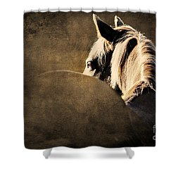 Calm Awareness 2 Vignette Shower Curtain by Michelle Twohig