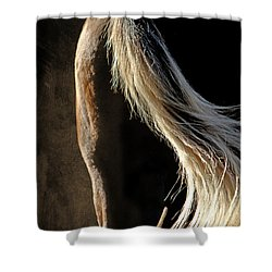 Calm Awareness 3 Vignette Shower Curtain by Michelle Twohig