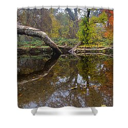 Calm On Big Chico Creek Shower Curtain