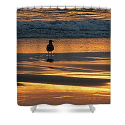Shower Curtain featuring the photograph Calm by Ramona Johnston