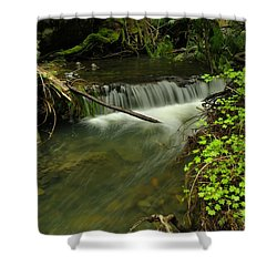 Calm Rapids Shower Curtain by Jeff Swan