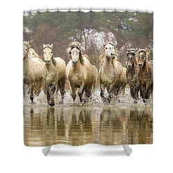 Camargue Horses At The Gallop Shower Curtain