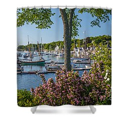 Camden Harbor Spring Shower Curtain by Susan Cole Kelly