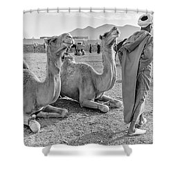 Camel Market, Morocco, 1972 - Travel Photography By David Perry Lawrence Shower Curtain
