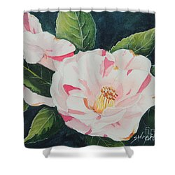Camellia ...sold  Shower Curtain