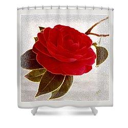 Camellia Spectacular Shower Curtain by Ben and Raisa Gertsberg