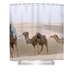 Dromedary Camel Shower Curtains