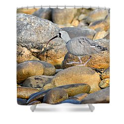Camouflage Shower Curtain