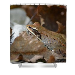 Camouflage Shower Curtain by James Petersen
