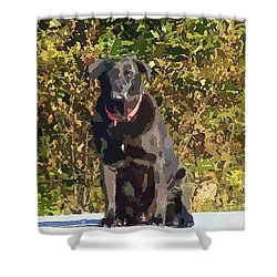 Camouflage Labrador - Black Dog - Retriever Shower Curtain by Barbara Griffin
