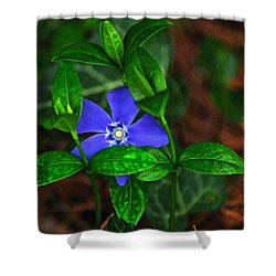 Camouflage Shower Curtain by Frozen in Time Fine Art Photography