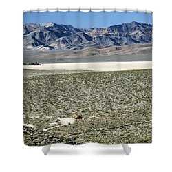 Shower Curtain featuring the photograph Camped At The End Of The Road by Joe Schofield